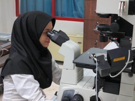 Abnormal uterine bleeding Research Center   Semnan ...